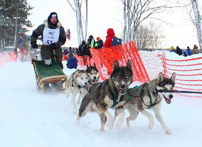 Tahquamenon Country Sled Dog Race